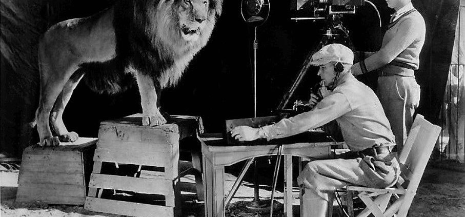 Animals in Film Leo the MGM Lion